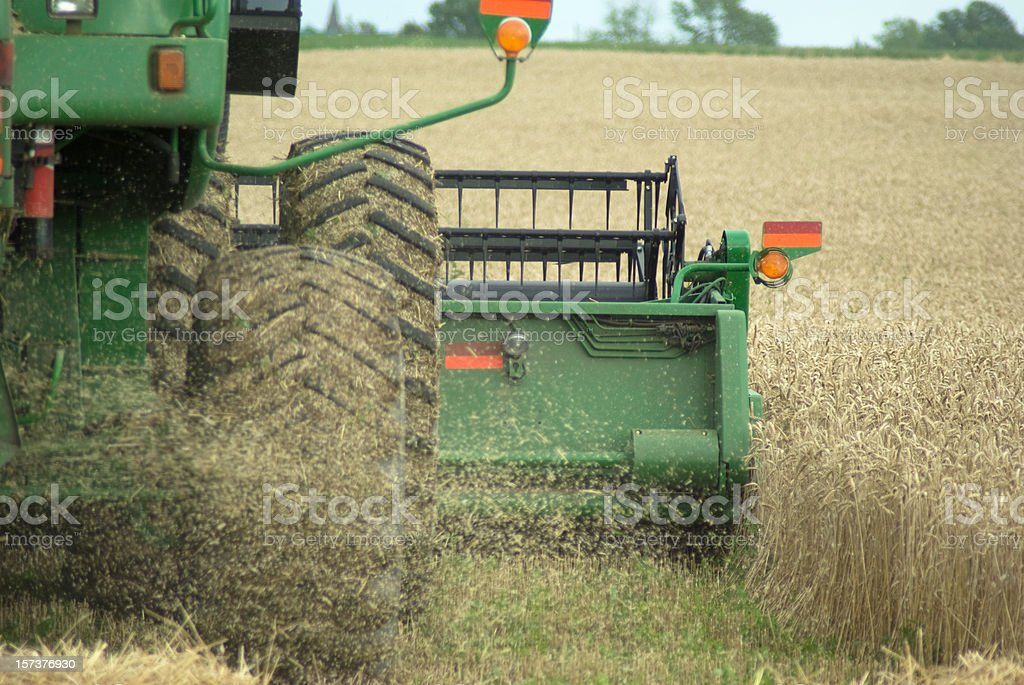 Combining Wheat stock photo
