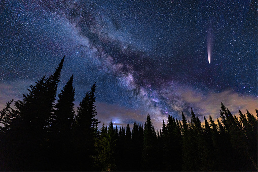 NEOWISE Comet in Night Sky with Milky Way Galaxy - Bright rare comet in dark sky with crisp bold Milky Way Galaxy and silhouetted trees mountain astrophotography landscape. Very dark skies perfect for stargazing.