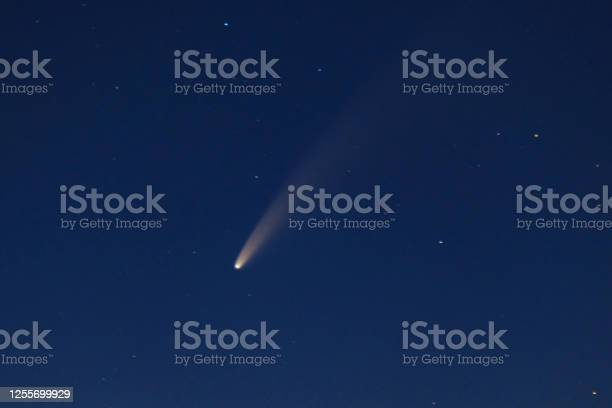 Photo of Comet Neowise in the dark night sky after sunset