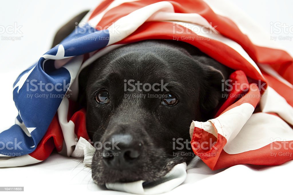 comfort flag stock photo