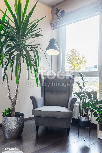 Cozy place to sit and read a book in a comfortable armchair surrounded by various plants.