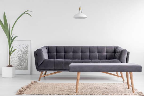 bequeme polsterbank auf einem beigen teppich und eine große, samt sofa in einem hellen, weißen wohnzimmer interieur mit einer pflanze. echtes foto. - gepolsterte bank stock-fotos und bilder