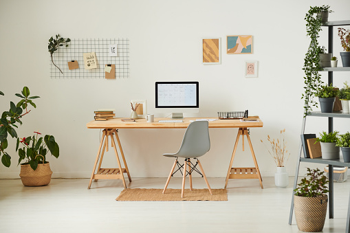 Comfortable workplace with potted plants