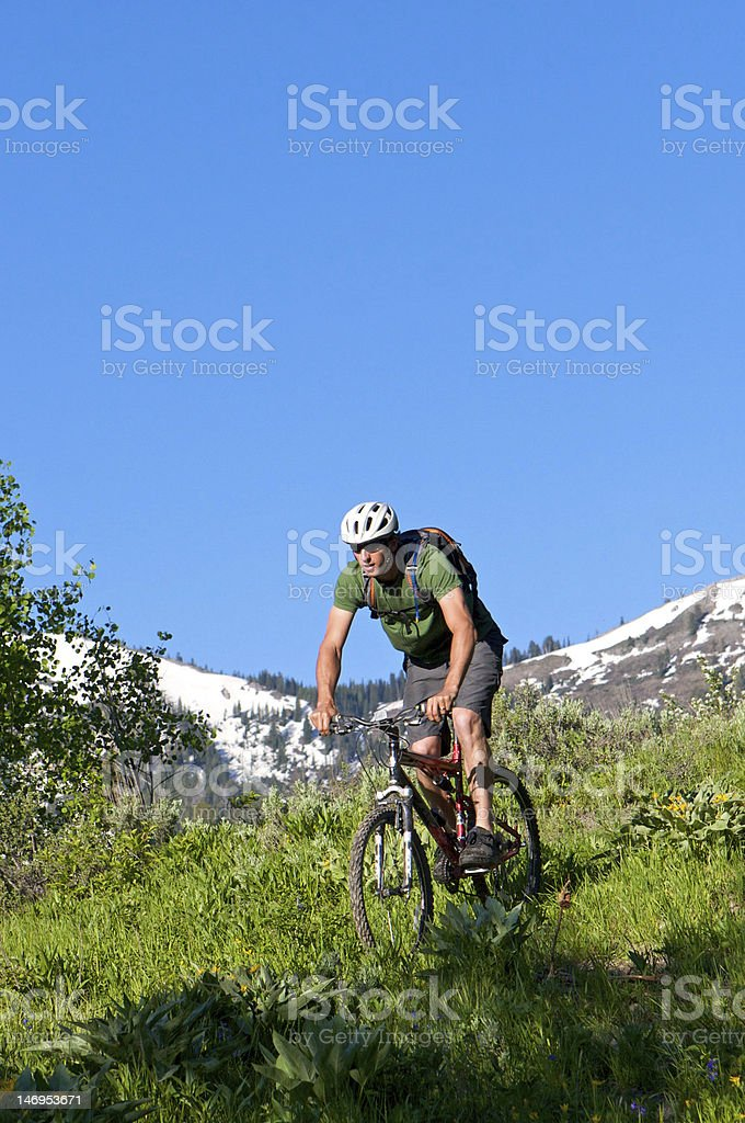 Coming down the mountain royalty-free stock photo