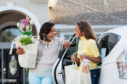 istock Coming home from grocery store 181136044