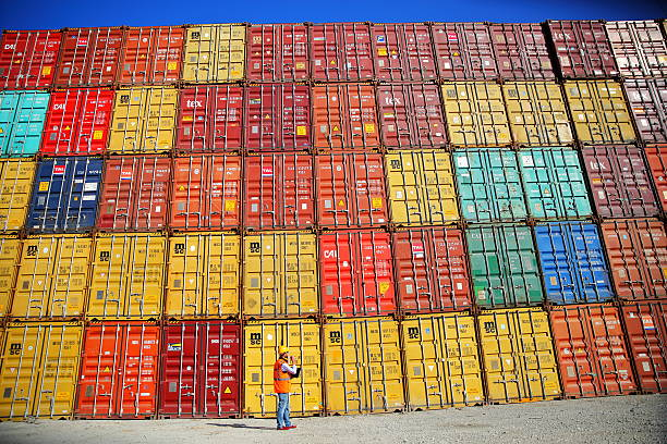 Commercial docks worker examining containers Commercial docks worker examining containers. customs official stock pictures, royalty-free photos & images