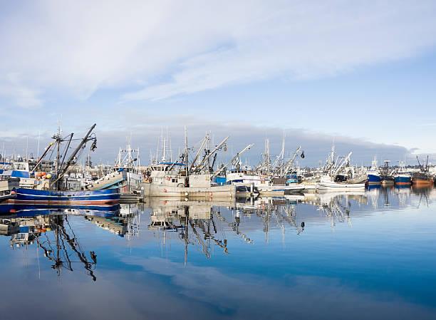 Kommerzielle Fischerboote am Dock – Foto