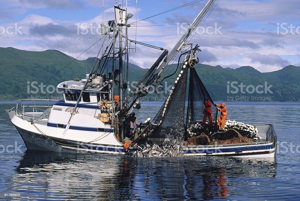 Commercial Salmon fishing stock photo