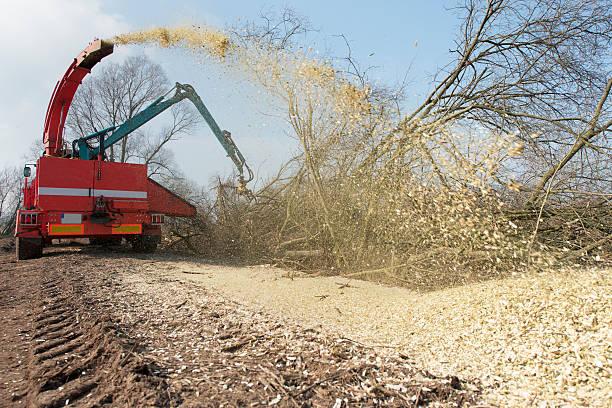 kommerzielle wood chipper hacken bäumen - häcksler stock-fotos und bilder