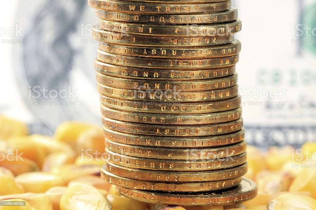 Commodity trading concept gold coins US currency with yellow corn stock photo