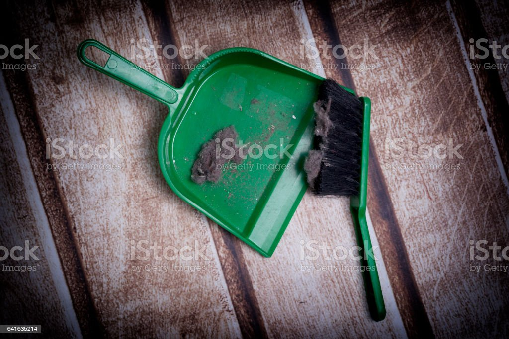 Common house dust stock photo