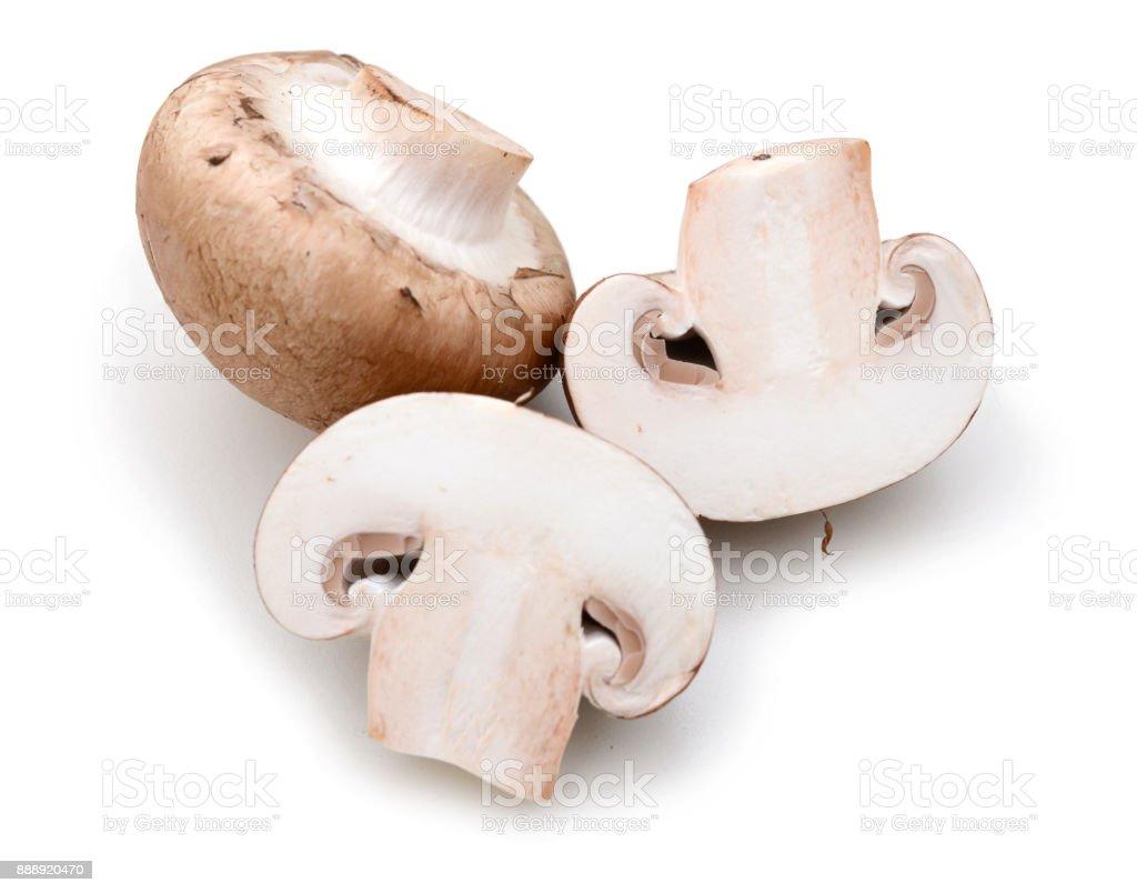 common mushroom and half stock photo