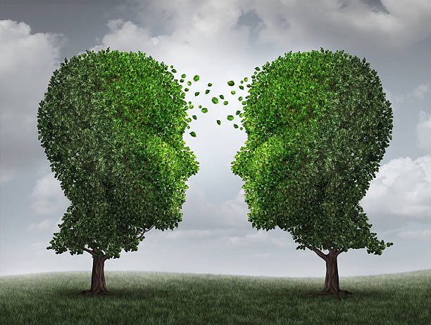Communication And Growth Communication and growth concept as a growing partnership and teamwork exchange in business with two trees in the shape of human heads on a sky with leaves exchanging from one face to the other as a concept of cooperation. face to face stock pictures, royalty-free photos & images