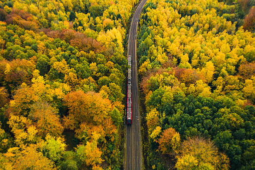 Electric city train running on rails above the car traffic from central Copenhagen to the outskirts outside of the city, where forest and nature is found. Aerial view shot with drone in autumn. Public transportation by train and bus are together with bicycling the fastest way to to get to work in this capital.