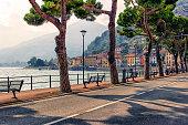 istock Como lake in north Italy 1176823889