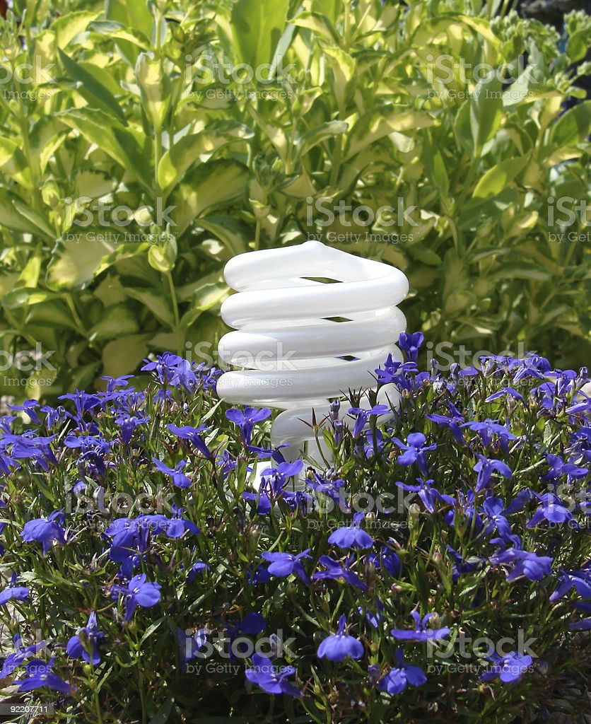 CFL compact fluorescent light bulb royalty-free stock photo