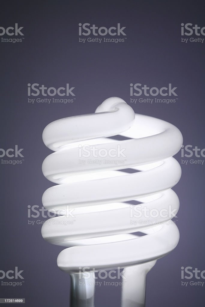 Compact fluorescent lightbulb coils stock photo
