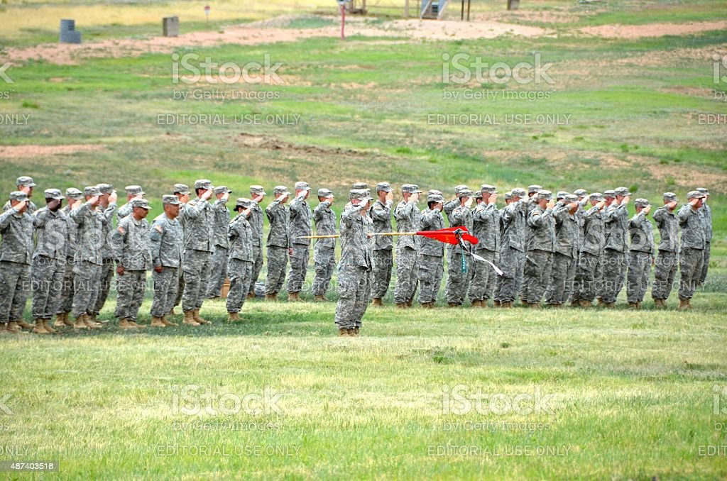 Company of Soldiers Saluting stock photo
