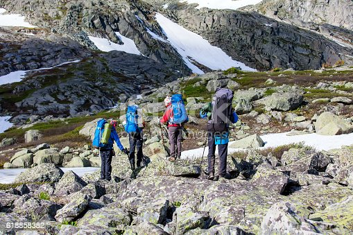 istock Company of young people are hiking in Altai mountains 618858382