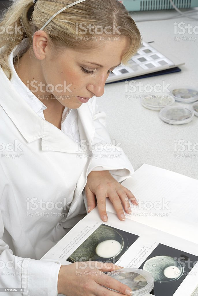 Compare biological samples royalty-free stock photo