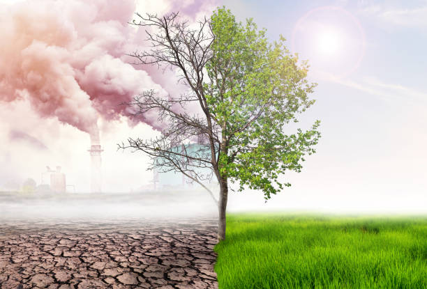 comparing green earth and effect of air pollution from human action, glbal warming concept, green tree and green earth with light and arid land with air pollusion at background - anidride carbonica foto e immagini stock