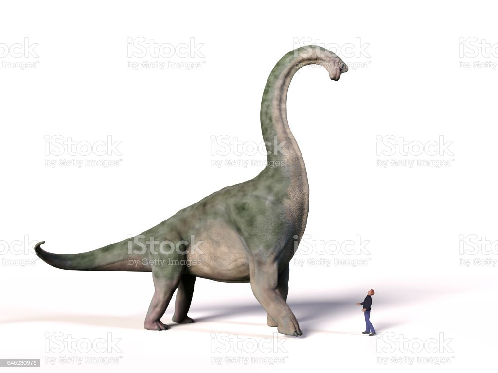 comparison of the size of an adult Brachiosaurus altithorax from the Late Jurassic and a 1.8m human (Homo sapiens) stock photo