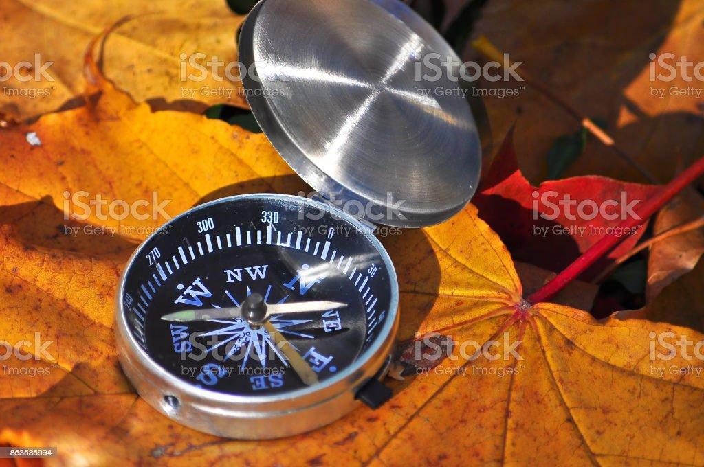 Compass illuminated by the sun on fallen leaves. stock photo