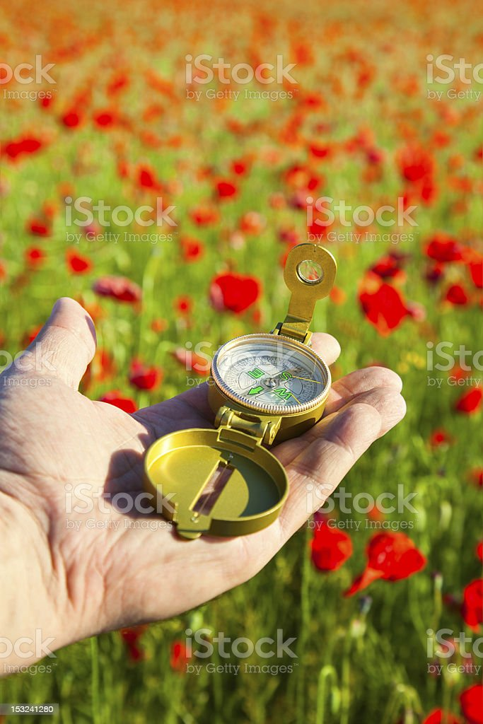 Compass in a Hand / Discovery / Beautiful Day / Red Poppies royalty-free stock photo
