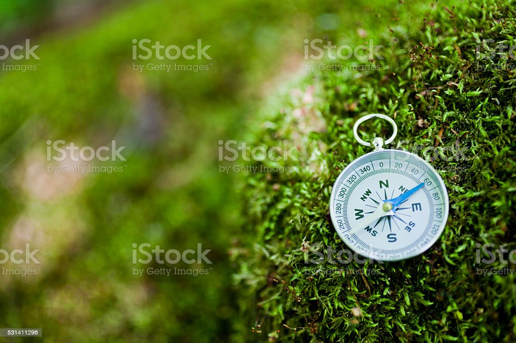 Compass on Mossy Rock stock photo
