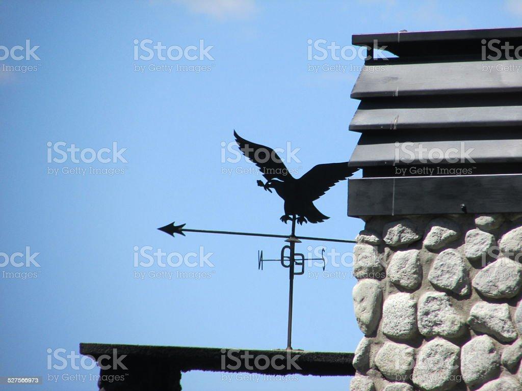 Compass Rose-Eagle - foto de acervo
