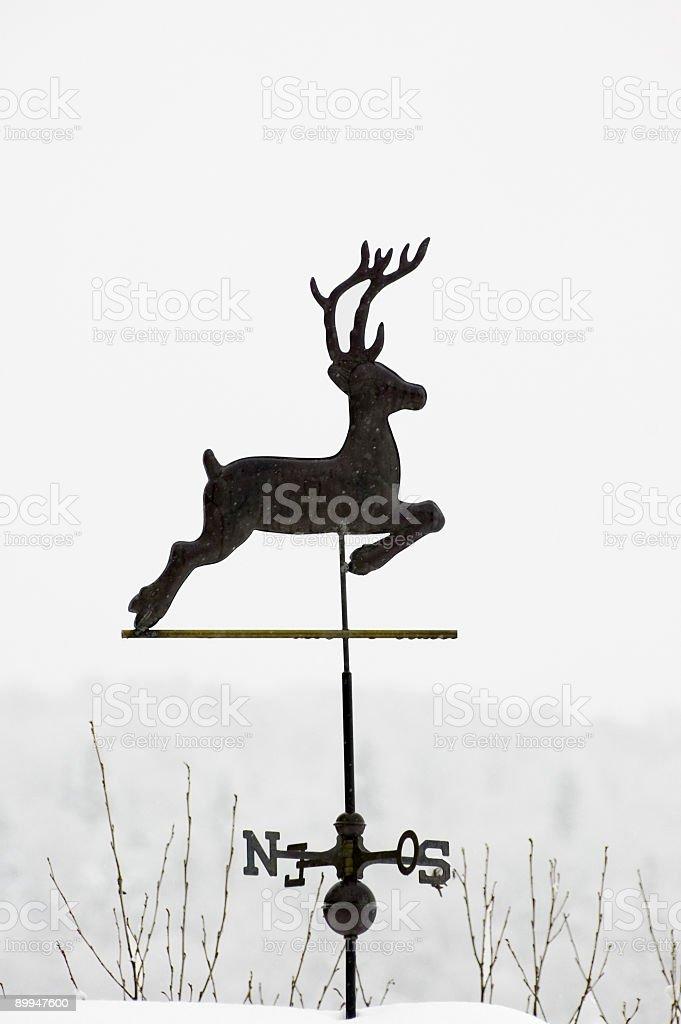 compass wind rose stock photo