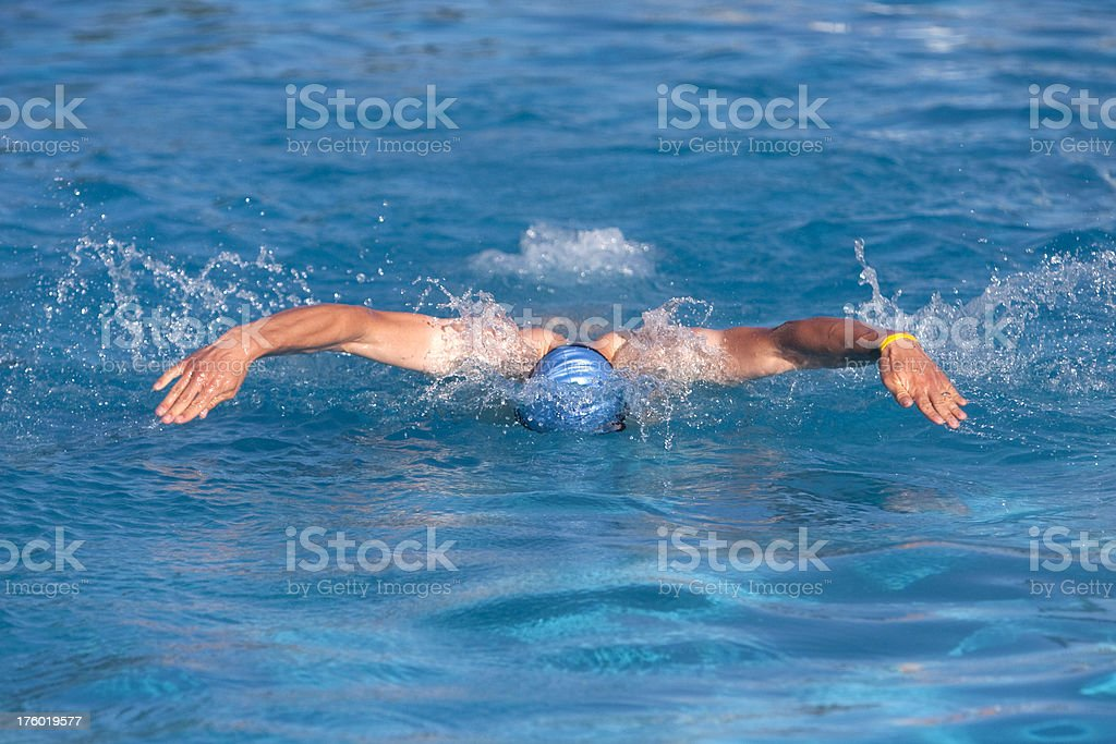 Competitive swimmer royalty-free stock photo