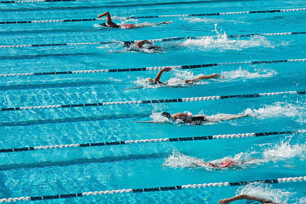 competición - natación fotografías e imágenes de stock