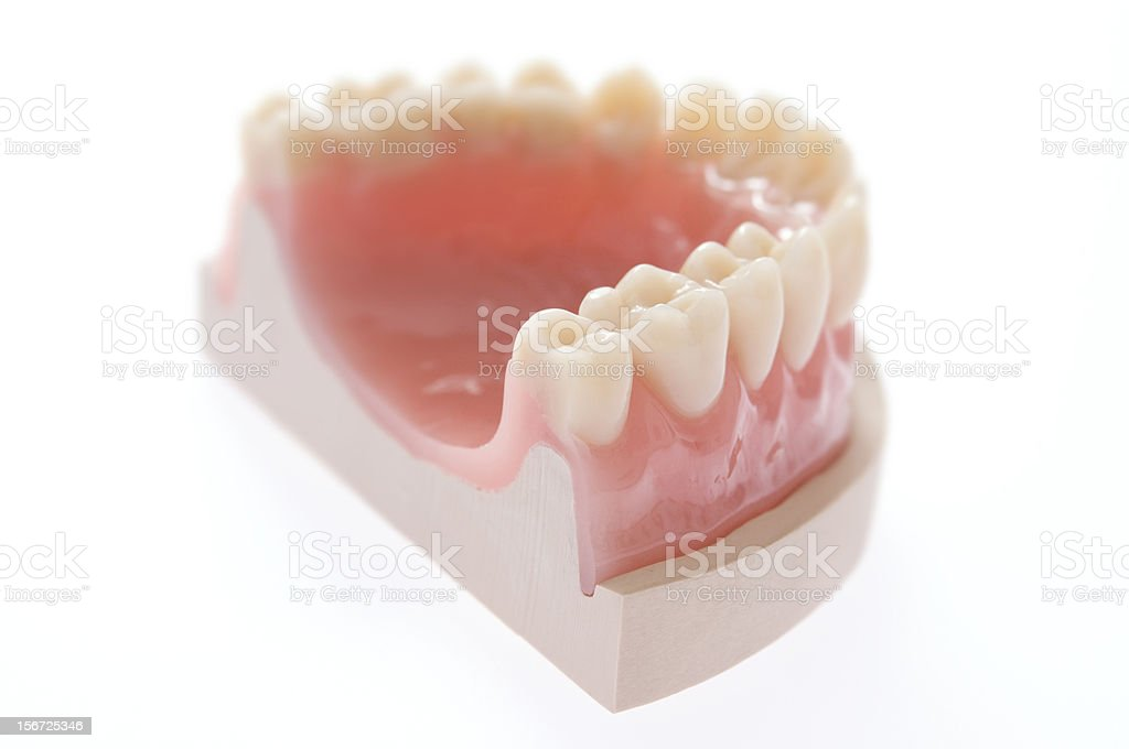 complete denture royalty-free stock photo