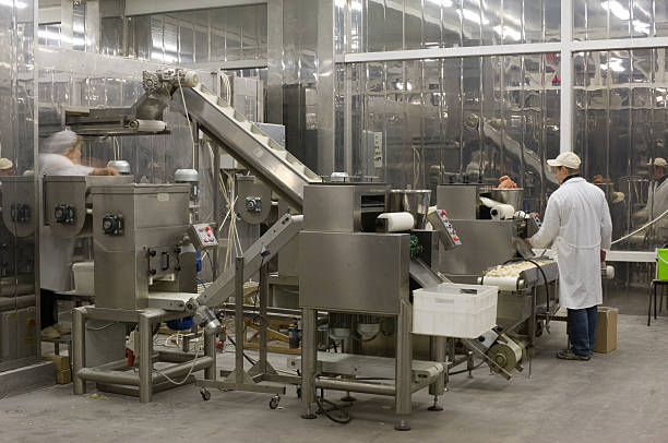 A complex production line with workers in a food factory Automated production line in modern food factory. Ravioli production. People working. food warehouse stock pictures, royalty-free photos & images