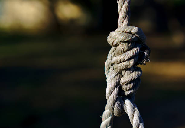 complicated knot of rope - resilience concept stock photos and pictures