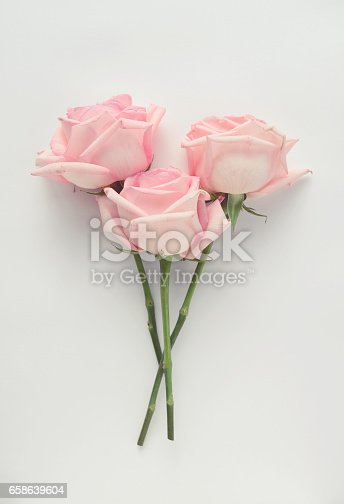612015846 istock photo composition flat lay,Roses 658639604