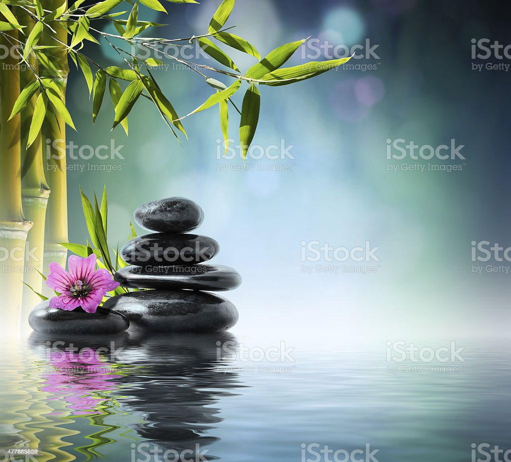 composition massage spa - with hibiscus stock photo