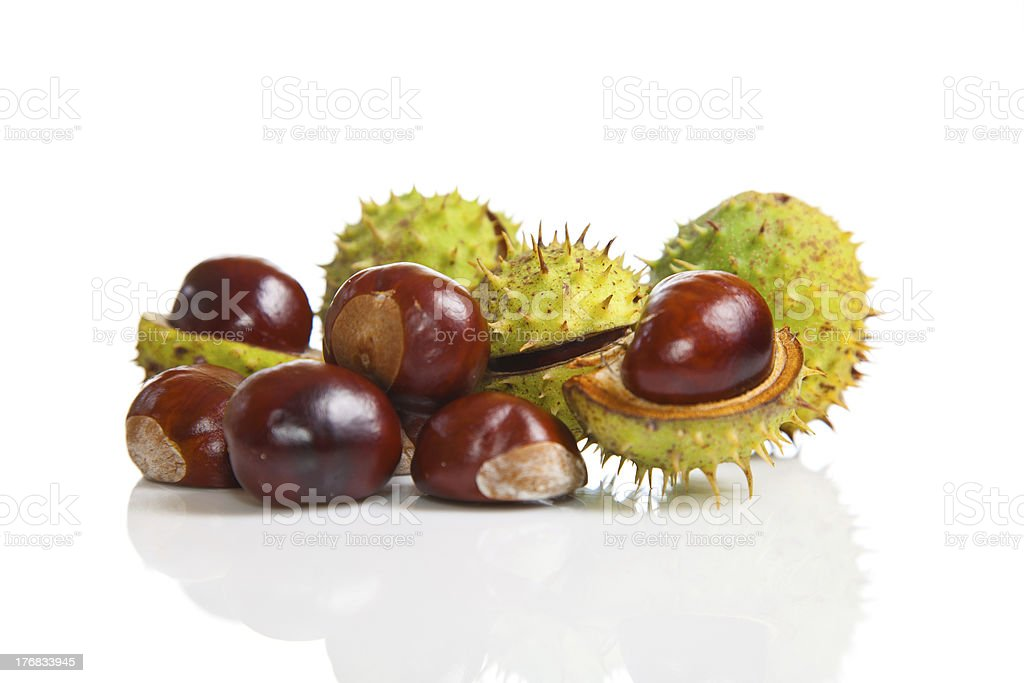 Composition of autumn chestnuts and leaves stock photo