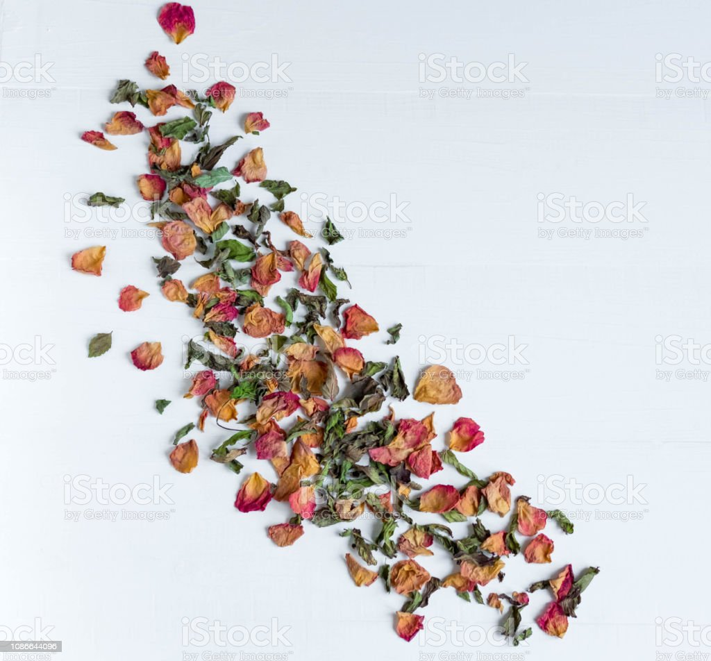 Composition of dried leaves and rose petals. Concept with dried rose...
