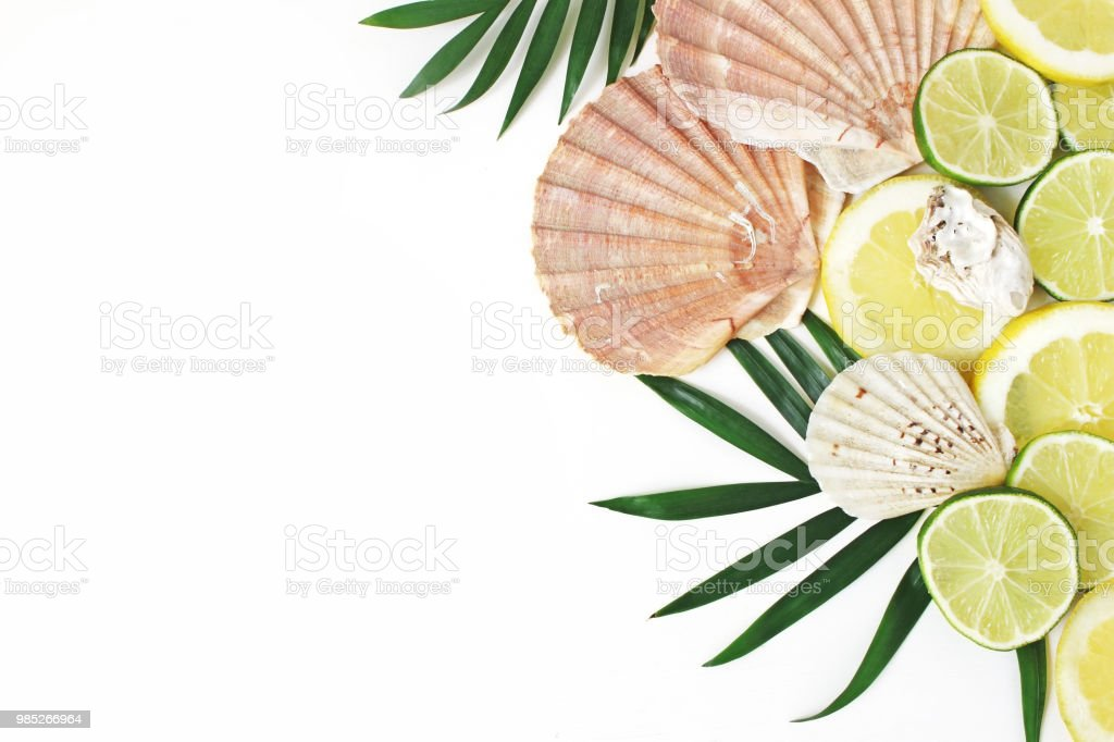 Composition of exotic seashells, oysters, lime and lemons on lush green palm leaves isolated on white wooden background. Tropical summer vacation and food concept. Flat lay, top view. stock photo