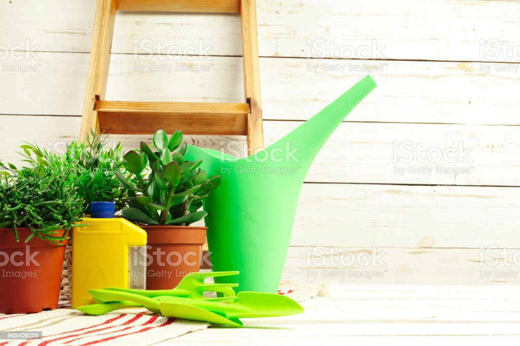composition of garden tools royalty-free stock photo