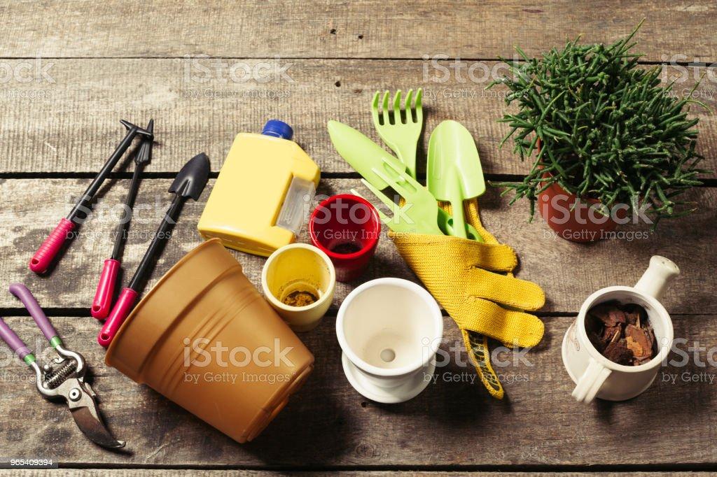 園林工具的組成 - 免版稅一組物體圖庫照片