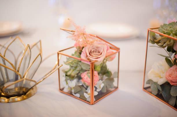 zusammensetzung der sukkulenten, jasmin und rosen im terrarium - jasmin party stock-fotos und bilder