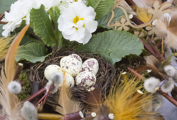 Composition on Easter with quail stock photo