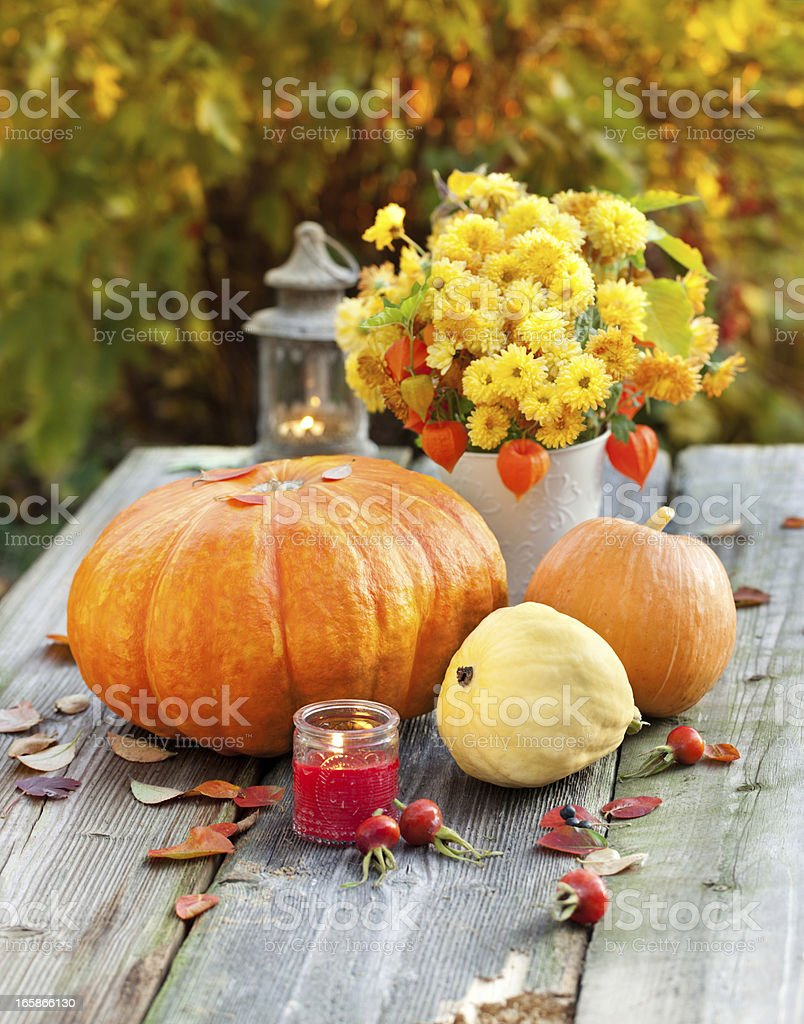 Composition with an autumn vegetables stock photo