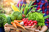 istock Composition with assorted raw organic fresh vegetables. 1222581733