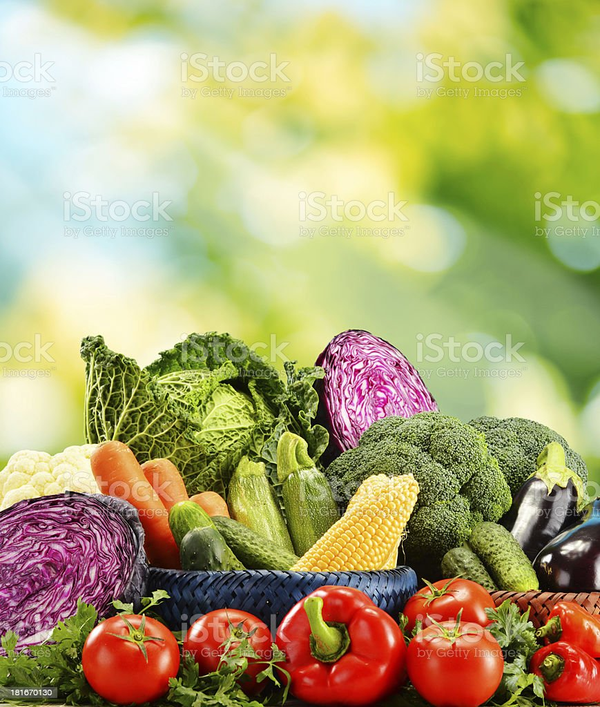 Composition with assorted vegetables royalty-free stock photo