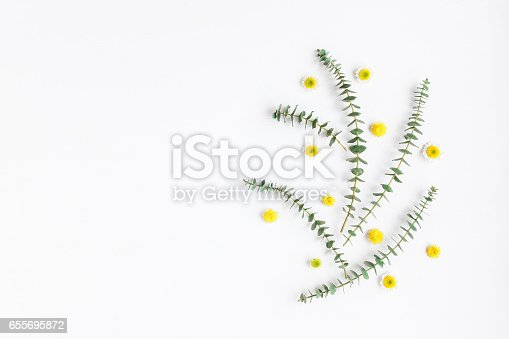 istock Composition with fresh eucalyptus branches and yellow flowers 655695872