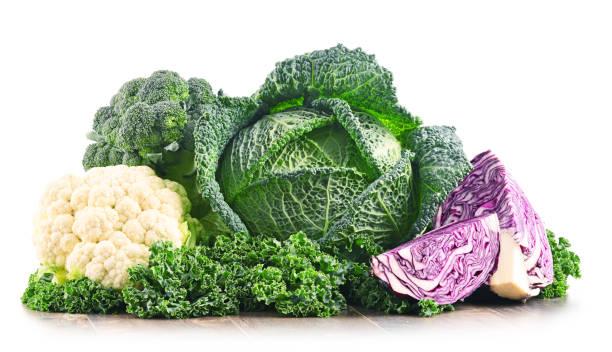 kompozycja z surowymi warzywami organicznymi. - kapustowate zdjęcia i obrazy z banku zdjęć